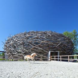 Dezeen Stork Nest Farm by Sgl Projekt 1